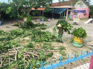 Chặt mé cây xanh đảm bảo an toàn cho trẻ